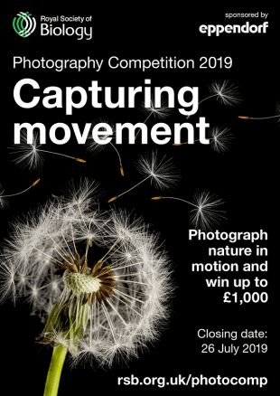 Royal Society of Biology Photography Competition 2019