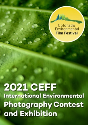 2021 CEFF International Environmental Photography Contest and Exhibition