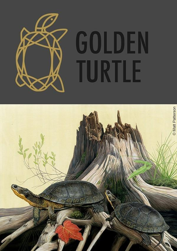 Golden Turtle 2021